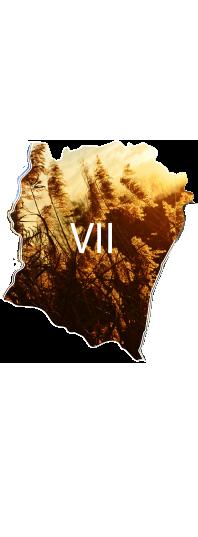 Presencia en Chile